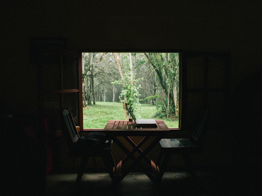 Una oficina improvisada en la selva misionera. Foto