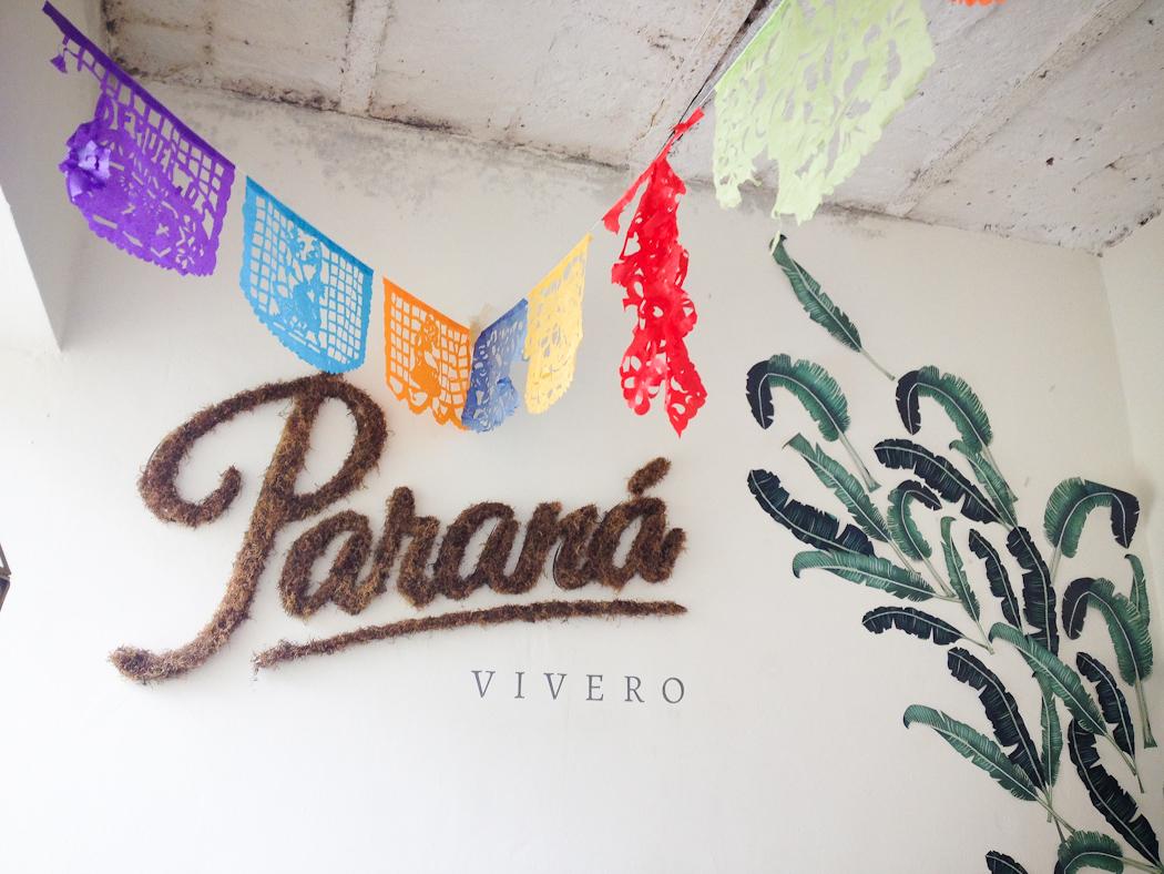 'Cartel' de musgo de Paraná Vivero. Foto